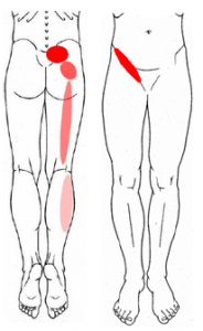 Pilates4Physio - Physiotherapy and Pilates - Downtown - Toronto - Sacroiliac Joint Pain